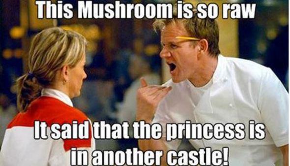 chef-gordon-ramsay-meme-mushroom