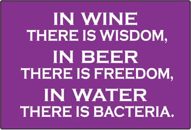 wine-beer-water-funny-quotes1