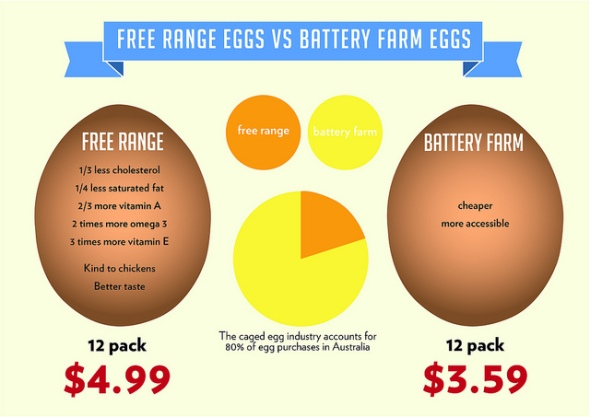freerange-batteryeggs