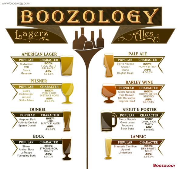 Beer_infographic_final-1024x965