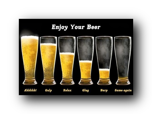 enjoy-your-beer-poster-funny-beer-chart-33601